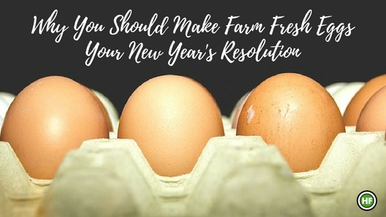 Why You Should Make Farm Fresh Eggs Your New Year's Resolution